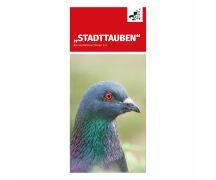 "Flyer ""Stadttauben"""
