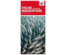 """Flyer """"Fische und andere Wassertiere"""""""